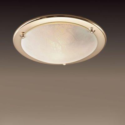 Светильник Сонекс 121 золото AlabastroКруглые<br>Настенно потолочный светильник Сонекс (Sonex) 121  подходит как для установки в вертикальном положении - на стены, так и для установки в горизонтальном - на потолок. Для установки настенно потолочных светильников на натяжной потолок необходимо использовать светодиодные лампы LED, которые экономнее ламп Ильича (накаливания) в 10 раз, выделяют мало тепла и не дадут расплавиться Вашему потолку.<br><br>S освещ. до, м2: 6<br>Тип лампы: накаливания / энергосбережения / LED-светодиодная<br>Тип цоколя: E27<br>Количество ламп: 1<br>MAX мощность ламп, Вт: 100<br>Диаметр, мм мм: 310<br>Цвет арматуры: золотой