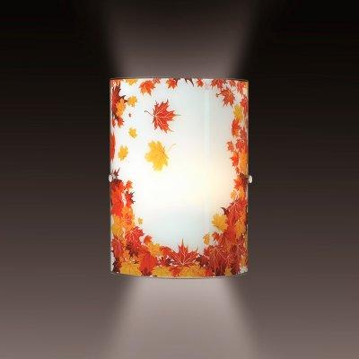 Светильник Сонекс 1254Накладные<br><br><br>S освещ. до, м2: 4<br>Тип лампы: накаливания / энергосбережения / LED-светодиодная<br>Тип цоколя: E27<br>Количество ламп: 1<br>Ширина, мм: 178<br>MAX мощность ламп, Вт: 60<br>Высота, мм: 250<br>Цвет арматуры: серебристый