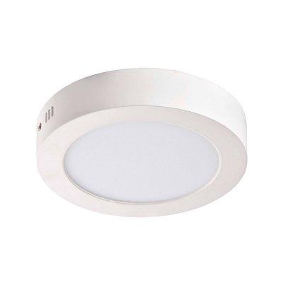 Светильник Favourite 1347-12CКруглые<br>Настенно-потолочные светильники – это универсальные осветительные варианты, которые подходят для вертикального и горизонтального монтажа. В интернет-магазине «Светодом» Вы можете приобрести подобные модели по выгодной стоимости. В нашем каталоге представлены как бюджетные варианты, так и эксклюзивные изделия от производителей, которые уже давно заслужили доверие дизайнеров и простых покупателей.  Настенно-потолочный светильник Favourite 1347-12C станет прекрасным дополнением к основному освещению. Благодаря качественному исполнению и применению современных технологий при производстве эта модель будет радовать Вас своим привлекательным внешним видом долгое время. Приобрести настенно-потолочный светильник Favourite 1347-12C можно, находясь в любой точке России.<br><br>S освещ. до, м2: 5<br>Крепление: планка<br>Тип лампы: LED - светодиодная<br>Тип цоколя: LED<br>Количество ламп: 1<br>MAX мощность ламп, Вт: 12<br>Диаметр, мм мм: 172<br>Размеры: D172*H35<br>Высота, мм: 35<br>Цвет арматуры: белый