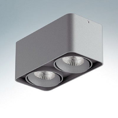 Lightstar MONOCCO 212529 СветильникПотолочные<br>Настенно-потолочные светильники – это универсальные осветительные варианты, которые подходят для вертикального и горизонтального монтажа. В интернет-магазине «Светодом» Вы можете приобрести подобные модели по выгодной стоимости. В нашем каталоге представлены как бюджетные варианты, так и эксклюзивные изделия от производителей, которые уже давно заслужили доверие дизайнеров и простых покупателей.  Настенно-потолочный светильник Lightstar 212529 станет прекрасным дополнением к основному освещению. Благодаря качественному исполнению и применению современных технологий при производстве эта модель будет радовать Вас своим привлекательным внешним видом долгое время. Приобрести настенно-потолочный светильник Lightstar 212529 можно, находясь в любой точке России.<br><br>S освещ. до, м2: 5<br>Тип цоколя: MR16<br>Количество ламп: 2<br>Ширина, мм: 100<br>MAX мощность ламп, Вт: 50<br>Длина, мм: 195<br>Высота, мм: 90