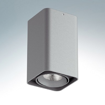 Lightstar MONOCCO 212539 СветильникДаунлайты<br><br><br>Тип цоколя: MR16<br>Ширина, мм: 100<br>MAX мощность ламп, Вт: 50<br>Длина, мм: 100<br>Высота, мм: 170