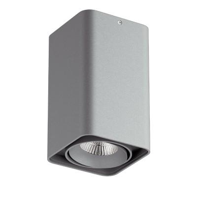 Lightstar MONOCCO 212539 СветильникДаунлайты<br><br><br>Тип лампы: галогенная/LED<br>Тип цоколя: MR16<br>Ширина, мм: 100<br>MAX мощность ламп, Вт: 50<br>Длина, мм: 100<br>Высота, мм: 170<br>Цвет арматуры: серый