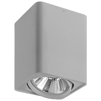 Светильник точечный накладной Lightstar 212639 Monoccoсветильники стаканы потолочные<br>Крепление: a; Внешние габариты:L+W148 H200; Материал - основание/плафон: металл; Цвет-основание/плафон: серый; Лампа: AR111