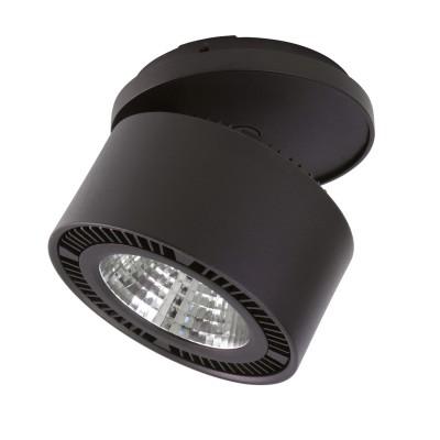 Светильник встраиваемый светодиодный Lightstar 213827 Forte incaметаллические встраиваемые светильники<br>Врезное отверстие: d115 h40; Внешние габариты: D126, H117 ; Материал - основание/плафон: металл; Цвет-основание/плафон: черный; Лампа: LED 26W= 260W; Световой поток: 1950LM;  3000К ; Угол рассеивания: 30G; Транcформатор в комплекте
