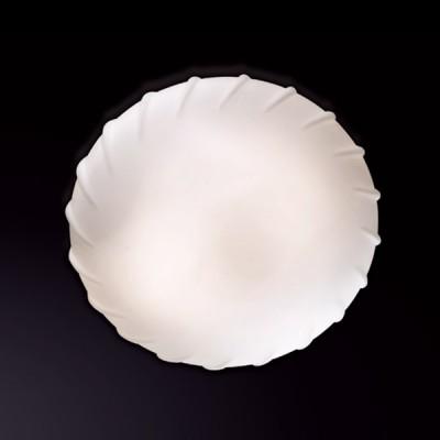 Светильник Odeon Light 2247/2A белый OpalКруглые<br>Элегантный настенно-потолочный светильник Odeon Light 2247/2A белый Opal   классической круглой формы станет прекрасным дополнением к световому оформлению любого современного интерьера! Его можно использовать в единичном экземпляре, а можно, скомбинировав несколько светильников, создать уникальную «композицию», которая сделает комнату неповторимой и «авторской». Универсальная конструкция и матовый белый оттенок легко впишутся в любую цветовую гамму и в различные по функциональному назначению помещения – от прихожей до спальни. Благодаря «цельному» плафону, светильник легко очистить от загрязнений – достаточно протереть поверхность влажной салфеткой, поэтому его можно смело использовать даже на кухне.<br><br>S освещ. до, м2: 8<br>Крепление: планка<br>Тип лампы: накаливания / энергосбережения / LED-светодиодная<br>Тип цоколя: E27<br>Количество ламп: 2<br>MAX мощность ламп, Вт: 60<br>Диаметр, мм мм: 300<br>Высота, мм: 110<br>Цвет арматуры: серебристый