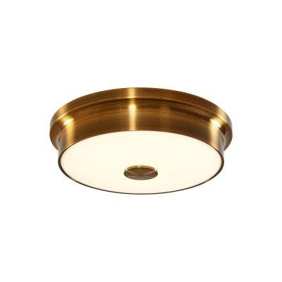 Светильник настенно-потолочный Citilux CL706222 Фостер-2 фото
