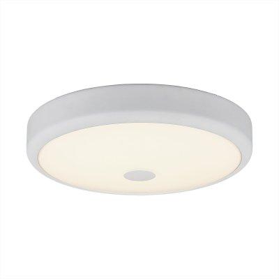 Светильник настенно-потолочный Citilux CL706130 Фостер-1круглые светильники<br>