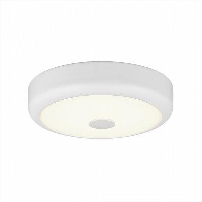 Купить Светильник настенно-потолочный Citilux CL706120 Фостер-1, Дания