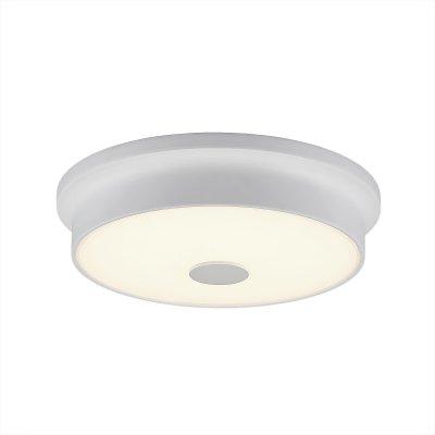 Купить Светильник настенно-потолочный Citilux CL706220 Фостер-2, Дания