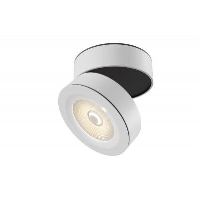 Потолочный светильник Maytoni C023CL-L20W Treviso фото
