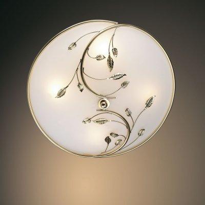 Настенно-потолочный светильник odeon light 2728/4C REGANAКруглые<br>Настенно-потолочные светильники – это универсальные осветительные варианты, которые подходят для вертикального и горизонтального монтажа. В интернет-магазине «Светодом» Вы можете приобрести подобные модели по выгодной стоимости. В нашем каталоге представлены как бюджетные варианты, так и эксклюзивные изделия от производителей, которые уже давно заслужили доверие дизайнеров и простых покупателей.  Настенно-потолочный светильник Odeon light 2728/4C  станет прекрасным дополнением к основному освещению. Благодаря качественному исполнению и применению современных технологий при производстве эта модель будет радовать Вас своим привлекательным внешним видом долгое время. Приобрести настенно-потолочный светильник Odeon light 2728/4C  можно, находясь в любой точке России. Компания «Светодом» осуществляет доставку заказов не только по Москве и Екатеринбургу, но и в остальные города.<br><br>S освещ. до, м2: 10<br>Тип лампы: накаливания / энергосбережения / LED-светодиодная<br>Тип цоколя: E14<br>Количество ламп: 4<br>MAX мощность ламп, Вт: 40<br>Диаметр, мм мм: 430<br>Высота, мм: 165<br>Цвет арматуры: золотой
