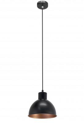 Eglo TRURO 1 49238 Подвесной светильникПодвесные<br>Компания «Светодом» предлагает широкий ассортимент люстр от известных производителей. Представленные в нашем каталоге товары выполнены из современных материалов и обладают отличным качеством. Благодаря широкому ассортименту Вы сможете найти у нас люстру под любой интерьер. Мы предлагаем как классические варианты, так и современные модели, отличающиеся лаконичностью и простотой форм.  Стильная люстра Eglo 49238 станет украшением любого дома. Эта модель от известного производителя не оставит равнодушным ценителей красивых и оригинальных предметов интерьера. Люстра Eglo 49238 обеспечит равномерное распределение света по всей комнате. При выборе обратите внимание на характеристики, позволяющие приобрести наиболее подходящую модель. Купить понравившуюся люстру по доступной цене Вы можете в интернет-магазине «Светодом».<br><br>Установка на натяжной потолок: Да<br>S освещ. до, м2: 1<br>Крепление: Планка<br>Тип цоколя: E27<br>Количество ламп: 1<br>MAX мощность ламп, Вт: 60<br>Диаметр, мм мм: 210<br>Размеры основания, мм: 0<br>Высота, мм: 1100<br>Цвет арматуры: черный<br>Общая мощность, Вт: 1X60W