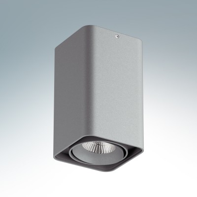 Lightstar MONOCCO 52139 СветильникДекоративные<br>Настенно-потолочные светильники – это универсальные осветительные варианты, которые подходят для вертикального и горизонтального монтажа. В интернет-магазине «Светодом» Вы можете приобрести подобные модели по выгодной стоимости. В нашем каталоге представлены как бюджетные варианты, так и эксклюзивные изделия от производителей, которые уже давно заслужили доверие дизайнеров и простых покупателей.  Настенно-потолочный светильник Lightstar 52139 станет прекрасным дополнением к основному освещению. Благодаря качественному исполнению и применению современных технологий при производстве эта модель будет радовать Вас своим привлекательным внешним видом долгое время. Приобрести настенно-потолочный светильник Lightstar 52139 можно, находясь в любой точке России.<br><br>S освещ. до, м2: 4<br>Тип лампы: LED<br>Тип цоколя: LED<br>Цвет арматуры: серый<br>Количество ламп: 1<br>Ширина, мм: 100<br>Длина, мм: 100<br>Высота, мм: 170<br>MAX мощность ламп, Вт: 10