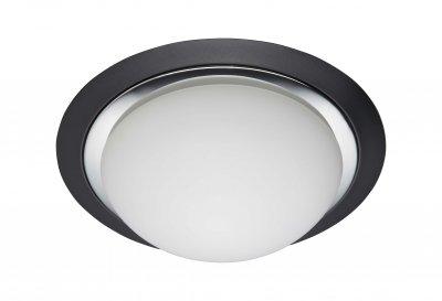 Светильник Brilliant 93851/76 MagnoliaКруглые<br><br><br>S освещ. до, м2: 5<br>Тип товара: Светильник для ванной комнаты<br>Тип лампы: накаливания / энергосбережения / LED-светодиодная<br>Тип цоколя: E27<br>Количество ламп: 2<br>MAX мощность ламп, Вт: 40<br>Диаметр, мм мм: 290<br>Высота, мм: 110<br>Цвет арматуры: черный