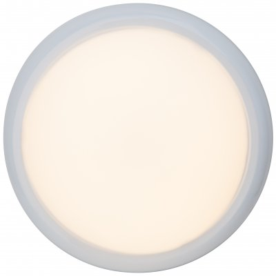 Светильник Brilliant G94151/05 VigorКруглые<br>Настенно-потолочные светильники – это универсальные осветительные варианты, которые подходят для вертикального и горизонтального монтажа. В интернет-магазине «Светодом» Вы можете приобрести подобные модели по выгодной стоимости. В нашем каталоге представлены как бюджетные варианты, так и эксклюзивные изделия от производителей, которые уже давно заслужили доверие дизайнеров и простых покупателей.  Настенно-потолочный светильник Brilliant G94151/05 станет прекрасным дополнением к основному освещению. Благодаря качественному исполнению и применению современных технологий при производстве эта модель будет радовать Вас своим привлекательным внешним видом долгое время. Приобрести настенно-потолочный светильник Brilliant G94151/05 можно, находясь в любой точке России. Компания «Светодом» осуществляет доставку заказов не только по Москве и Екатеринбургу, но и в остальные города.<br><br>Тип лампы: LED - светодиодная<br>Диаметр, мм мм: 250<br>Высота, мм: 75