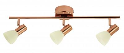 Eglo GLOSSY 2 94738 Светильник поворотный спотТройные<br>Светильники-споты – это оригинальные изделия с современным дизайном. Они позволяют не ограничивать свою фантазию при выборе освещения для интерьера. Такие модели обеспечивают достаточно качественный свет. Благодаря компактным размерам Вы можете использовать несколько спотов для одного помещения.  Интернет-магазин «Светодом» предлагает необычный светильник-спот Eglo 94738 по привлекательной цене. Эта модель станет отличным дополнением к люстре, выполненной в том же стиле. Перед оформлением заказа изучите характеристики изделия.  Купить светильник-спот Eglo 94738 в нашем онлайн-магазине Вы можете либо с помощью формы на сайте, либо по указанным выше телефонам. Обратите внимание, что у нас склады не только в Москве и Екатеринбурге, но и других городах России.<br><br>S освещ. до, м2: 6<br>Цветовая t, К: 3000 (теплый белый)<br>Тип цоколя: LED<br>Цвет арматуры: желтый<br>Ширина, мм: 100<br>Размеры основания, мм: 0<br>Длина, мм: 585<br>Оттенок (цвет): шампань<br>Общая мощность, Вт: 3X5W