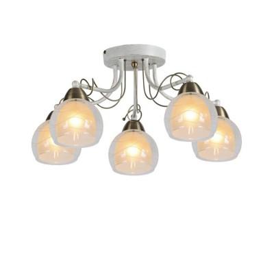 A1633PL-5WG Arte lamp СветильникПотолочные<br><br><br>Установка на натяжной потолок: Да<br>S освещ. до, м2: 10<br>Тип цоколя: E14<br>Цвет арматуры: белый-ЗОЛОТОЙ<br>Количество ламп: 5<br>Диаметр, мм мм: 530<br>Размеры: L56*W56*H26CM<br>Длина, мм: 530<br>Высота, мм: 260<br>MAX мощность ламп, Вт: 60W<br>Общая мощность, Вт: 60W