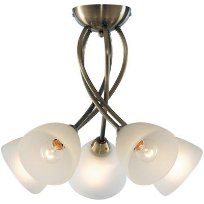 Люстра Arte lamp A2576PL-5AB NikkiПотолочные<br>Компания «Светодом» предлагает широкий ассортимент люстр от известных производителей. Представленные в нашем каталоге товары выполнены из современных материалов и обладают отличным качеством. Благодаря широкому ассортименту Вы сможете найти у нас люстру под любой интерьер. Мы предлагаем как классические варианты, так и современные модели, отличающиеся лаконичностью и простотой форм. <br>Стильная люстра Arte lamp A2576PL-5AB станет украшением любого дома. Эта модель от известного производителя не оставит равнодушным ценителей красивых и оригинальных предметов интерьера. Люстра Arte lamp A2576PL-5AB обеспечит равномерное распределение света по всей комнате. При выборе обратите внимание на характеристики, позволяющие приобрести наиболее подходящую модель. <br>Купить понравившуюся люстру по доступной цене Вы можете в интернет-магазине «Светодом».<br><br>Установка на натяжной потолок: Да<br>S освещ. до, м2: 14<br>Крепление: Планка<br>Тип лампы: накаливания / энергосбережения / LED-светодиодная<br>Тип цоколя: E14<br>Количество ламп: 5<br>Ширина, мм: 520<br>MAX мощность ламп, Вт: 40<br>Диаметр, мм мм: 520<br>Высота, мм: 350<br>Цвет арматуры: бронзовый