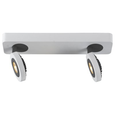 Светильник Arte lamp A3173AP-2WH MarsДвойные<br>Светильники-споты – это оригинальные изделия с современным дизайном. Они позволяют не ограничивать свою фантазию при выборе освещения для интерьера. Такие модели обеспечивают достаточно качественный свет. Благодаря компактным размерам Вы можете использовать несколько спотов для одного помещения.  Интернет-магазин «Светодом» предлагает необычный светильник-спот ARTE Lamp A3173AP-2WH по привлекательной цене. Эта модель станет отличным дополнением к люстре, выполненной в том же стиле. Перед оформлением заказа изучите характеристики изделия.  Купить светильник-спот ARTE Lamp A3173AP-2WH в нашем онлайн-магазине Вы можете либо с помощью формы на сайте, либо по указанным выше телефонам. Обратите внимание, что мы предлагаем доставку не только по Москве и Екатеринбургу, но и всем остальным российским городам.<br><br>Цветовая t, К: 4000<br>Тип лампы: LED<br>Тип цоколя: LED<br>Количество ламп: 2<br>Ширина, мм: 70<br>MAX мощность ламп, Вт: 5<br>Длина, мм: 300<br>Высота, мм: 150<br>Цвет арматуры: серый