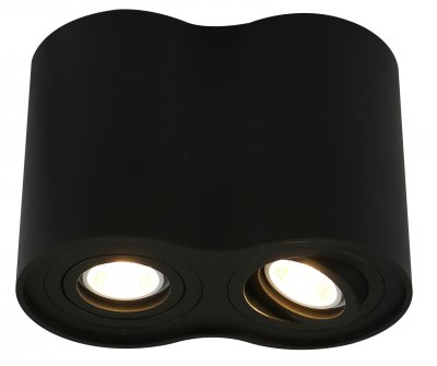 Купить Светильник Arte Lamp A5644PL-2BK, ARTELamp, Италия