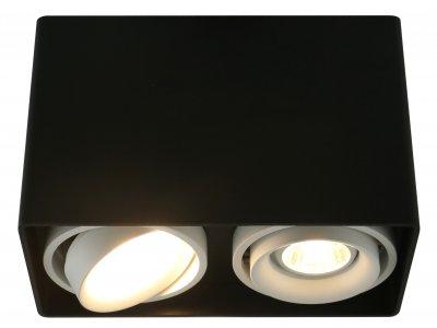 Купить Светильник Arte Lamp A5655PL-2BK, ARTELamp, Италия