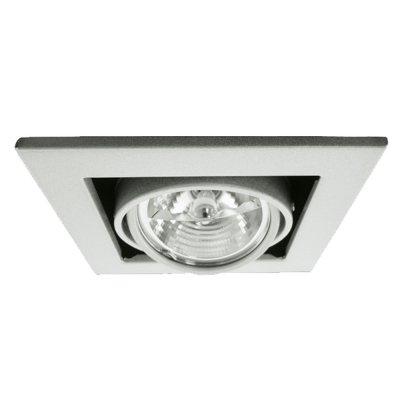 Светильник встраиваемый Arte lamp A5930PL-1SI TechnikaКарданные<br><br><br>S освещ. до, м2: 4<br>Тип лампы: галогенная<br>Тип цоколя: G5.3<br>Количество ламп: 1<br>Ширина, мм: 145<br>MAX мощность ламп, Вт: 50<br>Диаметр, мм мм: 145<br>Диаметр врезного отверстия, мм: 125<br>Длина, мм: 145<br>Высота, мм: 120<br>Цвет арматуры: серебряный/сталь
