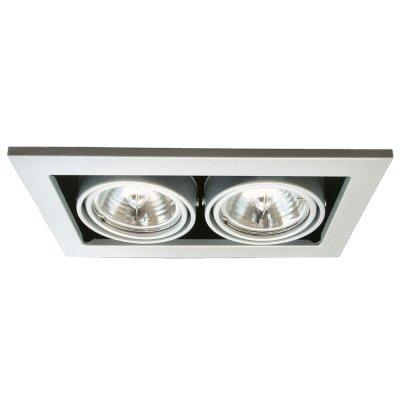 Светильник встраиваемый двойной Arte lamp A5930PL-2SI TechnikaКарданные<br>Двойной встраиваемый светильник с поворачивающимися лампами галогенного типа, которые можно заменить на светодиодные.<br><br>S освещ. до, м2: 7<br>Тип лампы: галогенная<br>Тип цоколя: G5.3<br>Количество ламп: 2<br>Ширина, мм: 250<br>MAX мощность ламп, Вт: 50<br>Диаметр, мм мм: 145<br>Диаметр врезного отверстия, мм: 220*125<br>Длина, мм: 250<br>Высота, мм: 120<br>Цвет арматуры: серебряный/сталь
