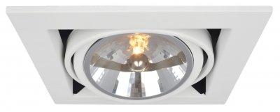 Светильник потолочный Arte lamp A5935PL-1WH CARDANIКарданные<br><br><br>Тип цоколя: G53/AR111<br>Количество ламп: 1<br>MAX мощность ламп, Вт: 50<br>Размеры: H13,2xW19,6xL19,6<br>Цвет арматуры: белый