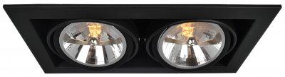 Светильник потолочный Arte lamp A5935PL-2BK CARDANIКарданные<br><br><br>Тип цоколя: G53/AR111<br>Количество ламп: 2<br>MAX мощность ламп, Вт: 50<br>Размеры: H13,2xW19,6xL35<br>Цвет арматуры: черный