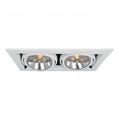 Светильник потолочный Arte lamp A5935PL-2WH CARDANIКарданные<br><br><br>Тип цоколя: G53/AR111<br>Цвет арматуры: белый<br>Количество ламп: 2<br>Размеры: H13,2xW19,6xL35<br>MAX мощность ламп, Вт: 50