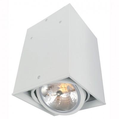 Светильник потолочный Arte lamp A5936PL-1WH CARDANIОдиночные<br>Светильники-споты – это оригинальные изделия с современным дизайном. Они позволяют не ограничивать свою фантазию при выборе освещения для интерьера. Такие модели обеспечивают достаточно качественный свет. Благодаря компактным размерам Вы можете использовать несколько спотов для одного помещения. <br>Интернет-магазин «Светодом» предлагает необычный светильник-спот ARTE Lamp A5936PL-1WH по привлекательной цене. Эта модель станет отличным дополнением к люстре, выполненной в том же стиле. Перед оформлением заказа изучите характеристики изделия. <br>Купить светильник-спот ARTE Lamp A5936PL-1WH в нашем онлайн-магазине Вы можете либо с помощью формы на сайте, либо по указанным выше телефонам. Обратите внимание, что у нас склады не только в Москве и Екатеринбурге, но и других городах России.<br><br>S освещ. до, м2: 3<br>Тип цоколя: G53/AR111<br>Цвет арматуры: белый<br>Количество ламп: 1<br>Размеры: H22xW16xL16<br>MAX мощность ламп, Вт: 50