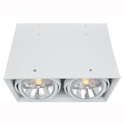 Светильник потолочный Arte lamp A5936PL-2WH CARDANIКарданные<br><br><br>Тип цоколя: G53/AR111<br>Количество ламп: 2<br>MAX мощность ламп, Вт: 50<br>Размеры: H22xW16xL31<br>Цвет арматуры: белый