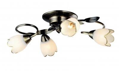 Светильник Arte lamp A6061PL-4AB PERCEПотолочные<br>Компания «Светодом» предлагает широкий ассортимент люстр от известных производителей. Представленные в нашем каталоге товары выполнены из современных материалов и обладают отличным качеством. Благодаря широкому ассортименту Вы сможете найти у нас люстру под любой интерьер. Мы предлагаем как классические варианты, так и современные модели, отличающиеся лаконичностью и простотой форм.  Стильная люстра Arte lamp A6061PL-4AB станет украшением любого дома. Эта модель от известного производителя не оставит равнодушным ценителей красивых и оригинальных предметов интерьера. Люстра Arte lamp A6061PL-4AB обеспечит равномерное распределение света по всей комнате. При выборе обратите внимание на характеристики, позволяющие приобрести наиболее подходящую модель. Купить понравившуюся люстру по доступной цене Вы можете в интернет-магазине «Светодом». Мы предлагаем доставку не только по Москве и Екатеринбурге, но и по всей России.<br><br>Установка на натяжной потолок: Да<br>S освещ. до, м2: 12<br>Крепление: Планка<br>Тип лампы: Накаливания / энергосбережения / светодиодная<br>Тип цоколя: E14<br>Цвет арматуры: бронзовый<br>Количество ламп: 4<br>Диаметр, мм мм: 560<br>Размеры: H20xW56xL56<br>Высота, мм: 200<br>MAX мощность ламп, Вт: 60