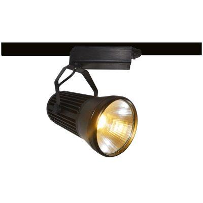 Светильник для трека Arte lamp A6330PL-1BK Track lightsСветильники для трека<br><br><br>Цветовая t, К: 3000<br>Тип лампы: LED<br>MAX мощность ламп, Вт: 30<br>Длина, мм: 100<br>Высота, мм: 216<br>Цвет арматуры: черный