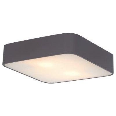 Светильник Arte lamp A7210PL-2BK CosmopolitanКвадратные<br>Настенно-потолочные светильники – это универсальные осветительные варианты, которые подходят для вертикального и горизонтального монтажа. В интернет-магазине «Светодом» Вы можете приобрести подобные модели по выгодной стоимости. В нашем каталоге представлены как бюджетные варианты, так и эксклюзивные изделия от производителей, которые уже давно заслужили доверие дизайнеров и простых покупателей.  Настенно-потолочный светильник ARTELamp A7210PL-2BK станет прекрасным дополнением к основному освещению. Благодаря качественному исполнению и применению современных технологий при производстве эта модель будет радовать Вас своим привлекательным внешним видом долгое время.  Приобрести настенно-потолочный светильник ARTELamp A7210PL-2BK можно, находясь в любой точке России.<br><br>S освещ. до, м2: 6<br>Тип лампы: Накаливания / энергосбережения / светодиодная<br>Тип цоколя: E27<br>Количество ламп: 2<br>MAX мощность ламп, Вт: 60<br>Диаметр, мм мм: 300<br>Высота, мм: 80