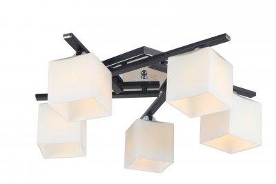 Светильник потолочный Arte lamp A8165PL-5BK VISUALEПотолочные<br><br><br>S освещ. до, м2: 10<br>Тип цоколя: E27<br>Количество ламп: 5<br>MAX мощность ламп, Вт: 40<br>Размеры: H20xW54xL54<br>Цвет арматуры: черный