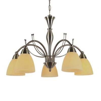 Светильник подвесной Arte lamp A8612LM-5AB PANNAПодвесные<br>Компания «Светодом» предлагает широкий ассортимент люстр от известных производителей. Представленные в нашем каталоге товары выполнены из современных материалов и обладают отличным качеством. Благодаря широкому ассортименту Вы сможете найти у нас люстру под любой интерьер. Мы предлагаем как классические варианты, так и современные модели, отличающиеся лаконичностью и простотой форм.  Стильная люстра Arte lamp A8612LM-5AB станет украшением любого дома. Эта модель от известного производителя не оставит равнодушным ценителей красивых и оригинальных предметов интерьера. Люстра Arte lamp A8612LM-5AB обеспечит равномерное распределение света по всей комнате. При выборе обратите внимание на характеристики, позволяющие приобрести наиболее подходящую модель. Купить понравившуюся люстру по доступной цене Вы можете в интернет-магазине «Светодом».<br><br>S освещ. до, м2: 10<br>Тип цоколя: E14<br>Количество ламп: 5<br>MAX мощность ламп, Вт: 40<br>Размеры: H37xW50xL50+шн/цп50<br>Цвет арматуры: бронзовый
