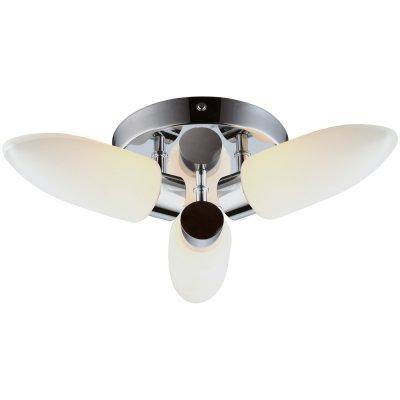 Люстра для ванной Arte lamp A9502PL-3CC AquaПотолочные<br>Компания «Светодом» предлагает широкий ассортимент люстр от известных производителей. Представленные в нашем каталоге товары выполнены из современных материалов и обладают отличным качеством. Благодаря широкому ассортименту Вы сможете найти у нас люстру под любой интерьер. Мы предлагаем как классические варианты, так и современные модели, отличающиеся лаконичностью и простотой форм. <br>Стильная люстра Arte lamp A9502PL-3CC станет украшением любого дома. Эта модель от известного производителя не оставит равнодушным ценителей красивых и оригинальных предметов интерьера. Люстра Arte lamp A9502PL-3CC обеспечит равномерное распределение света по всей комнате. При выборе обратите внимание на характеристики, позволяющие приобрести наиболее подходящую модель. <br>Купить понравившуюся люстру по доступной цене Вы можете в интернет-магазине «Светодом».<br><br>Установка на натяжной потолок: Ограничено<br>S освещ. до, м2: 6<br>Крепление: Планка<br>Тип лампы: галогенная / LED-светодиодная<br>Тип цоколя: G9<br>Цвет арматуры: серебристый<br>Количество ламп: 3<br>Диаметр, мм мм: 360<br>Высота, мм: 100<br>MAX мощность ламп, Вт: 33