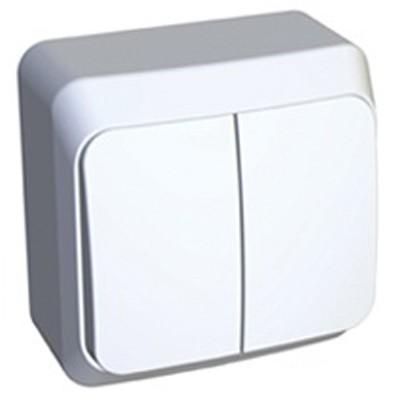 Lexel Этюд Двухклавишный выключатель (СХ. 5) белый (накладные) (BA10-002b)Белый<br><br><br>Тип товара: Выключатель<br>Оттенок (цвет): белый