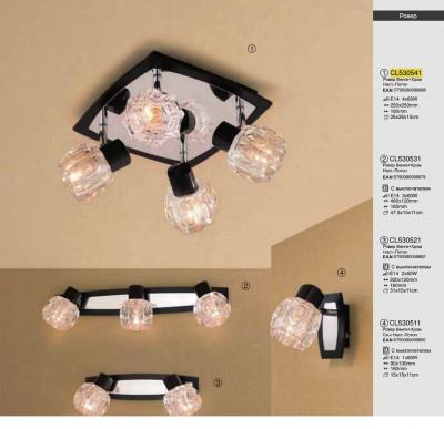 Citilux Ровер CL530541 Светильник поворотный спотС 4 лампами<br>Светильники-споты – это оригинальные изделия с современным дизайном. Они позволяют не ограничивать свою фантазию при выборе освещения для интерьера. Такие модели обеспечивают достаточно качественный свет. Благодаря компактным размерам Вы можете использовать несколько спотов для одного помещения.  Интернет-магазин «Светодом» предлагает необычный светильник-спот Citilux CL530541 по привлекательной цене. Эта модель станет отличным дополнением к люстре, выполненной в том же стиле. Перед оформлением заказа изучите характеристики изделия.  Купить светильник-спот Citilux CL530541 в нашем онлайн-магазине Вы можете либо с помощью формы на сайте, либо по указанным выше телефонам. Обратите внимание, что у нас склады не только в Москве и Екатеринбурге, но и других городах России.<br><br>S освещ. до, м2: 16<br>Тип лампы: накал-я - энергосбер-я<br>Тип цоколя: E14<br>Количество ламп: 4<br>Ширина, мм: 250<br>MAX мощность ламп, Вт: 60<br>Размеры: Основание 25х25см, Размер головки 11см, с выключателем<br>Длина, мм: 250<br>Высота, мм: 120<br>Оттенок (цвет): под дерево<br>Цвет арматуры: серебристый хром, венге