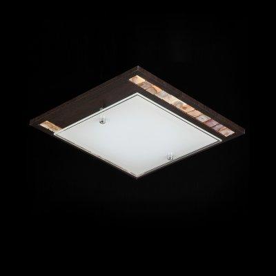 Светильник Maytoni CL810-01-R CL810Восточный стиль<br><br><br>Установка на натяжной потолок: Ограничено<br>S освещ. до, м2: 4<br>Крепление: Планка<br>Тип товара: Светильник<br>Тип лампы: накаливания / энергосбережения / LED-светодиодная<br>Тип цоколя: E27<br>Количество ламп: 1<br>Ширина, мм: 250<br>MAX мощность ламп, Вт: 60<br>Длина, мм: 250<br>Высота, мм: 90<br>Цвет арматуры: черный
