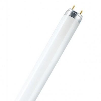 OSRAM L36/840 LUMILUX G13 D26mm 1200mmЛюм. лампы т8<br><br><br>Цветовая t, К: 4000<br>Тип лампы: люминесцентная<br>Тип цоколя: G13<br>MAX мощность ламп, Вт: 18<br>Диаметр, мм мм: 26<br>Длина, мм: 1200
