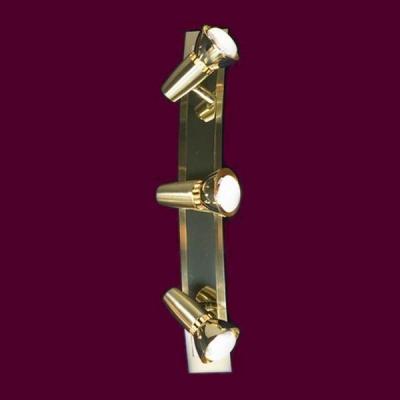 Светильник Lussole LSL-1401-03 Aprilia золотоТройные<br>Светильники-споты – это оригинальные изделия с современным дизайном. Они позволяют не ограничивать свою фантазию при выборе освещения для интерьера. Такие модели обеспечивают достаточно качественный свет. Благодаря компактным размерам Вы можете использовать несколько спотов для одного помещения.  Интернет-магазин «Светодом» предлагает необычный светильник-спот Lussole LSL-1401-03 по привлекательной цене. Эта модель станет отличным дополнением к люстре, выполненной в том же стиле. Перед оформлением заказа изучите характеристики изделия.  Купить светильник-спот Lussole LSL-1401-03 в нашем онлайн-магазине Вы можете либо с помощью формы на сайте, либо по указанным выше телефонам. Обратите внимание, что у нас склады не только в Москве и Екатеринбурге, но и других городах России.<br><br>S освещ. до, м2: 8<br>Тип лампы: накал-я - энергосбер-я/LED R73<br>Тип цоколя: R50<br>Количество ламп: 3<br>Ширина, мм: 60<br>MAX мощность ламп, Вт: 40<br>Расстояние от стены, мм: 130<br>Высота, мм: 450<br>Цвет арматуры: золотой