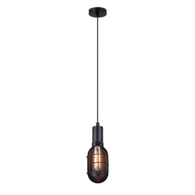 Подвес Loft LSP-9816Одиночные<br><br><br>Тип лампы: накаливания / энергосбережения / LED-светодиодная<br>Тип цоколя: E27<br>Количество ламп: 1<br>MAX мощность ламп, Вт: 60<br>Диаметр, мм мм: 100<br>Высота, мм: 1200
