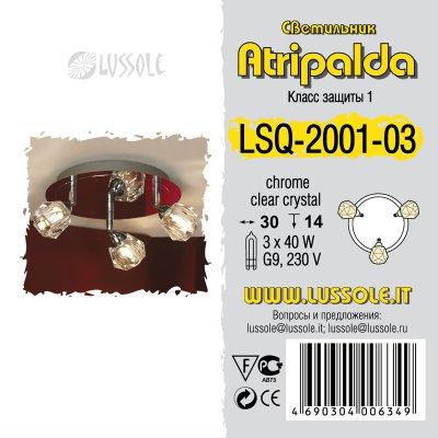 Поворотный светильник Lussole LSQ-2001-03 от Svetodom