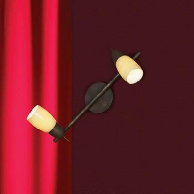 Светильник поворотный спот Lussole LSQ-6911-02 CEVEDALEДвойные<br>Оригинальный светильник с эффектом старения! Поворотный механизм плафонов дает вам возможность направлять лучи света в разные стороны. Кроме того вы можете самостоятельно менять яркость света, делая ее более направленной или приглушенной. Современная конструкция и сочетание белого и металлического цвета не дадут затеряться этому светильнику среди других предметов интерьера!<br><br>S освещ. до, м2: 6<br>Тип лампы: накал-я - энергосбер-я<br>Тип цоколя: e14<br>Цвет арматуры: коричневый<br>Количество ламп: 2<br>Ширина, мм: 11<br>Длина, мм: 41<br>Расстояние от стены, мм: 16<br>MAX мощность ламп, Вт: 40