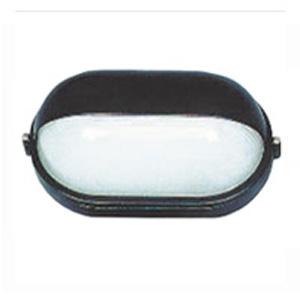 Светильник LUNA 60 32 01Настенные<br>Обеспечение качественного уличного освещения – важная задача для владельцев коттеджей. Компания «Светодом» предлагает современные светильники, которые порадуют Вас отличным исполнением. В нашем каталоге представлена продукция известных производителей, пользующихся популярностью благодаря высокому качеству выпускаемых товаров.   Уличный светильник LUNA 60 32 01  не просто обеспечит качественное освещение, но и станет украшением Вашего участка. Модель выполнена из современных материалов и имеет влагозащитный корпус, благодаря которому ей не страшны осадки.   Купить уличный светильник LUNA 60 32 01 , представленный в нашем каталоге, можно с помощью онлайн-формы для заказа. Чтобы задать имеющиеся вопросы, звоните нам по указанным телефонам. Мы доставим Ваш заказ не только в Москву и Екатеринбург, но и другие города.<br><br>Тип лампы: накаливания / энергосбережения / LED-светодиодная<br>Тип цоколя: E27<br>Количество ламп: 1<br>Ширина, мм: 283<br>MAX мощность ламп, Вт: 100<br>Расстояние от стены, мм: 140<br>Высота, мм: 162<br>Цвет арматуры: черный