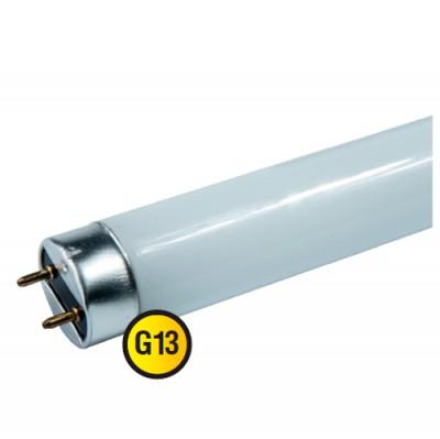 Лампа Navigator 71 303 NLL-G-T8-18-230-6.5K-G13С цоколем G13<br>В интернет-магазине «Светодом» можно купить не только люстры и светильники, но и лампочки. В нашем каталоге представлены светодиодные, галогенные, энергосберегающие модели и лампы накаливания. В ассортименте имеются изделия разной мощности, поэтому у нас Вы сможете приобрести все необходимое для освещения.   Лампа Navigator 71 303 NLL-G-T8-18-230-6.5K-G13 обеспечит отличное качество освещения. При покупке ознакомьтесь с параметрами в разделе «Характеристики», чтобы не ошибиться в выборе. Там же указано, для каких осветительных приборов Вы можете использовать лампу Navigator 71 303 NLL-G-T8-18-230-6.5K-G13Navigator 71 303 NLL-G-T8-18-230-6.5K-G13.   Для оформления покупки воспользуйтесь «Корзиной». При наличии вопросов Вы можете позвонить нашим менеджерам по одному из контактных номеров. Мы доставляем заказы в Москву, Екатеринбург и другие города России.<br>