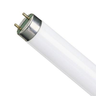 OSRAM L58/840 G13 холодный белыйЛюм. лампы т8<br>В интернет-магазине «Светодом» можно купить не только люстры и светильники, но и лампочки. В нашем каталоге представлены светодиодные, галогенные, энергосберегающие модели и лампы накаливания. В ассортименте имеются изделия разной мощности, поэтому у нас Вы сможете приобрести все необходимое для освещения.   Лампа OSRAM L58/840 G13 холодный белый обеспечит отличное качество освещения. При покупке ознакомьтесь с параметрами в разделе «Характеристики», чтобы не ошибиться в выборе. Там же указано, для каких осветительных приборов Вы можете использовать лампу OSRAM L58/840 G13 холодный белыйOSRAM L58/840 G13 холодный белый.   Для оформления покупки воспользуйтесь «Корзиной». При наличии вопросов Вы можете позвонить нашим менеджерам по одному из контактных номеров. Мы доставляем заказы в Москву, Екатеринбург и другие города России.<br><br>Тип лампы: люминесцентная<br>Тип цоколя: G13<br>MAX мощность ламп, Вт: 58<br>Диаметр, мм мм: 26<br>Длина, мм: 1500