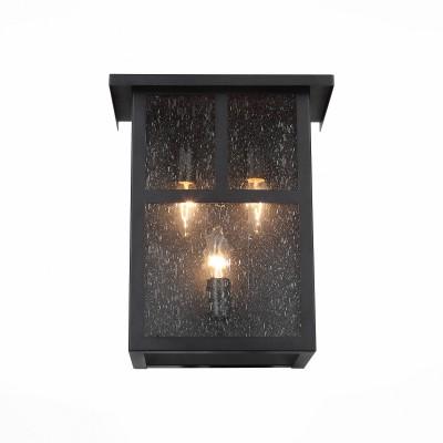 Уличный настенный светильник St luce SL079.401.03Настенные<br>Уличные светильники коллекции Glazgo выглядят просто и стильно. Они немного напоминают уютные окошечки загородного дома. Металлическое основание   окрашено в  цвет темного кофе. Плафон выполнен из кракелированного стекла, что придает ему загадочности,а рассеиваемый свет делает мягким и комфортным. Простые геометрические формы, сдержанный классический цвет делают светильник образцом элегантного вкуса.  Модель имеет высокий уровень IP защиты от влаги и пыли.<br><br>Крепление: планка<br>Тип лампы: накаливания / энергосбережения / LED-светодиодная<br>Тип цоколя: E14<br>Цвет арматуры: венге<br>Количество ламп: 3<br>Ширина, мм: 305<br>Расстояние от стены, мм: 119<br>Высота, мм: 348<br>Поверхность арматуры: матовая<br>Оттенок (цвет): коричневый<br>MAX мощность ламп, Вт: 60